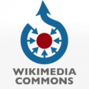 "Mediateca multimedia ""Wikimedia Commons"""